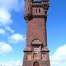Towering heights! by Braedene