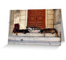 Arles, France 2009 Greeting Card