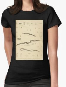 The Reptiles of British India by Albert C L G Gunther 1864 0513 Snakes Womens Fitted T-Shirt