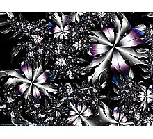 Metalwork Flowers Photographic Print