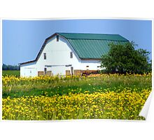 Barn amid the Mustard weed... Poster