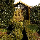 Arbour Seat In The Potager by Daisy-May