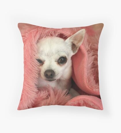 Chilly Chihuahua Throw Pillow