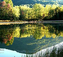 Reflections of Mt Yonah by dawiz1753