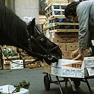 Covent Garden Fruit & Veg. Market, London 1973. by David A. L. Davies
