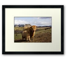 Highland County Framed Print