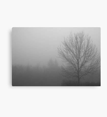 Out Of the Fog Canvas Print