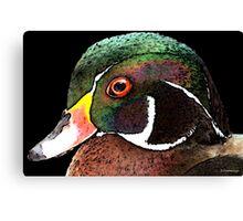 Wood Duck Art - Royalty Canvas Print