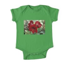 Christmas Red Amaryllis Flowers One Piece - Short Sleeve