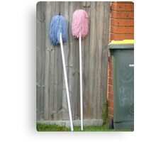 Two Mops Canvas Print
