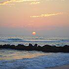 Sunset Casperson Beach Florida USA  by Shelby  Stalnaker Bortone