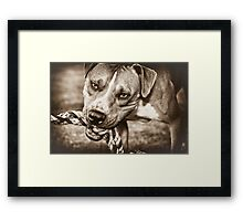 Play with me (sepia) Framed Print