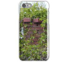 Chimney Greenery iPhone Case/Skin