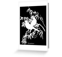 White Peaceful Dove Greeting Card