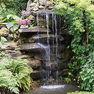Garden Waterfall by Elaine Teague