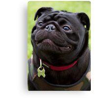Happy Black Pug Dog Canvas Print