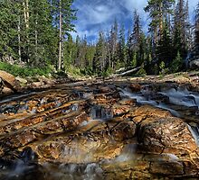 Utah Nature Photography - The Provo River in Utah up close by Alan Mitchell