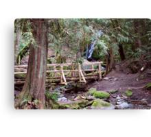 Coal Creek Falls Walking Bridge Canvas Print
