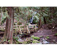 Coal Creek Falls Walking Bridge Photographic Print