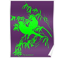 Green peaceful dove Poster