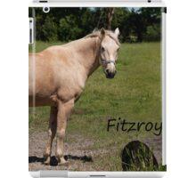 Fitzroy - NNEP Ottawa, On iPad Case/Skin