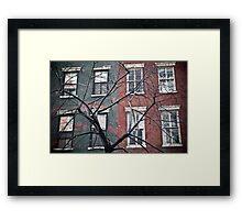 house facade Framed Print