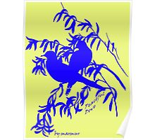 Blue peaceful dove  Poster