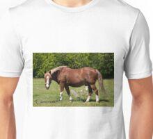 Cameron - NNEP Ottawa, On Unisex T-Shirt