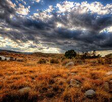 Cloudy Hillside by Bob Larson