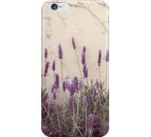 Lavanda iPhone Case/Skin