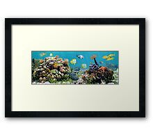 Underwater panorama with colorful tropical fish and sea life Framed Print