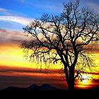 Rainbow Sky by Aj Finan