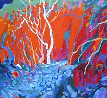 Gully gum by Kerry  Thompson