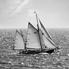 Sailing 1506 by Lena Weiss