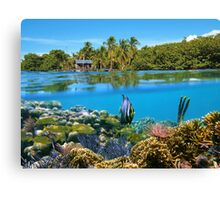 Over and underwater sea coral reef fish with tropical shore Canvas Print