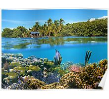 Over and underwater sea coral reef fish with tropical shore Poster