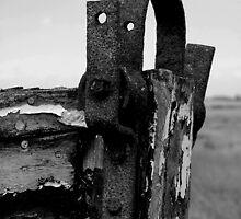 Rusty Boathead by Trevor Durrant