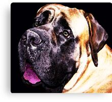 Mastiff Dog Art - Size Matters Canvas Print