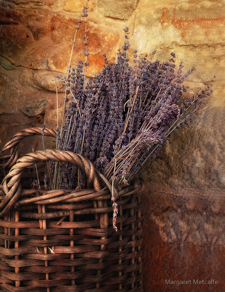 Lavender by Margaret Metcalfe