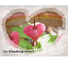 My Bleeding Heart Photographic Print