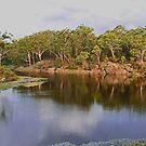 Parramatta Lakes by Brett Keith