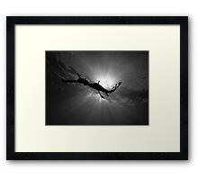 Seadragon & Sunlight Framed Print