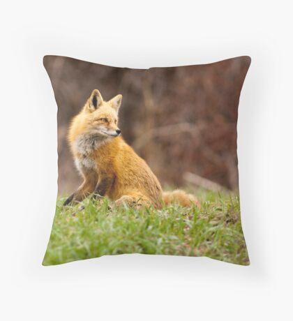 Backward Glance Throw Pillow