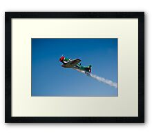 Flying Lion – ZU-BEU Framed Print