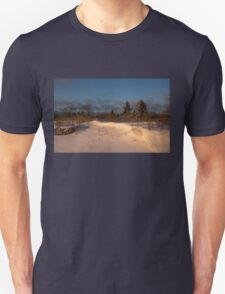 The Morning After the Snowstorm T-Shirt