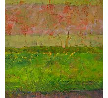 Abstract Landscape Series - Summer Fields Photographic Print