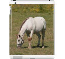 Kilty - NNEP Ottawa, Ontario iPad Case/Skin