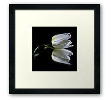 Peaceful Beauty 1 Framed Print