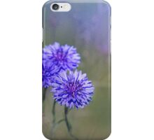Bachelor Buttons iPhone Case/Skin