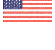American Faded Flag, Stars & Stripes, USA, Old Glory, The Star-Spangled Banner, America, AmericanaUSA by TOM HILL - Designer